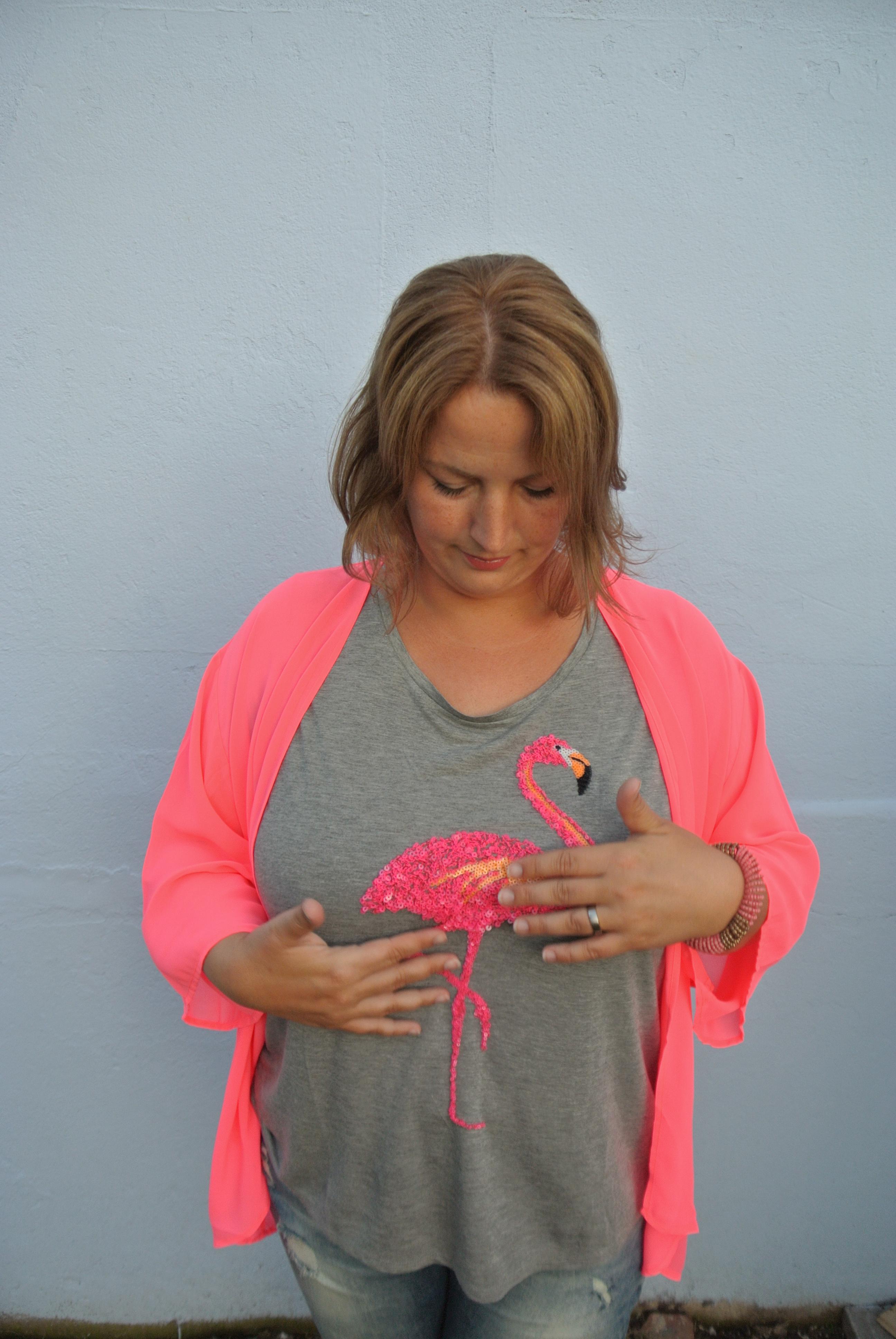 Flamingo-T-Shirt
